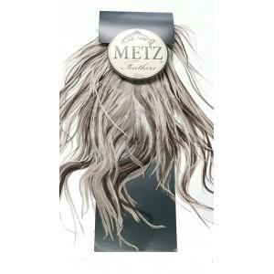 Spalla di gallo Metz -2 White splashed