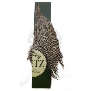 Mezzo collo di gallo Metz -3 Grizzly