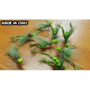Grasshopper fly -10