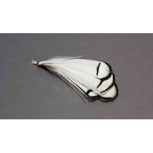 Lady amherst pheasant Tippets