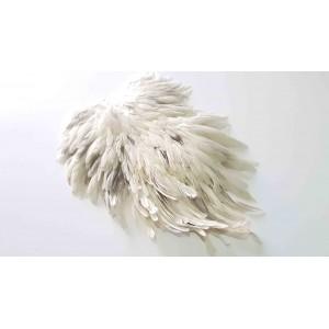 Spalla di gallina Metz -1 White Splash