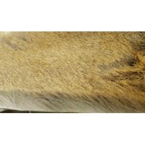 Pelo di Cervo pelo morbido