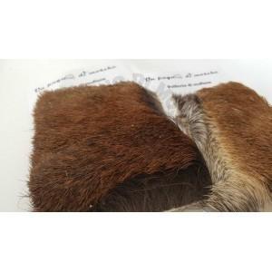 Mountain deer fur moufflon