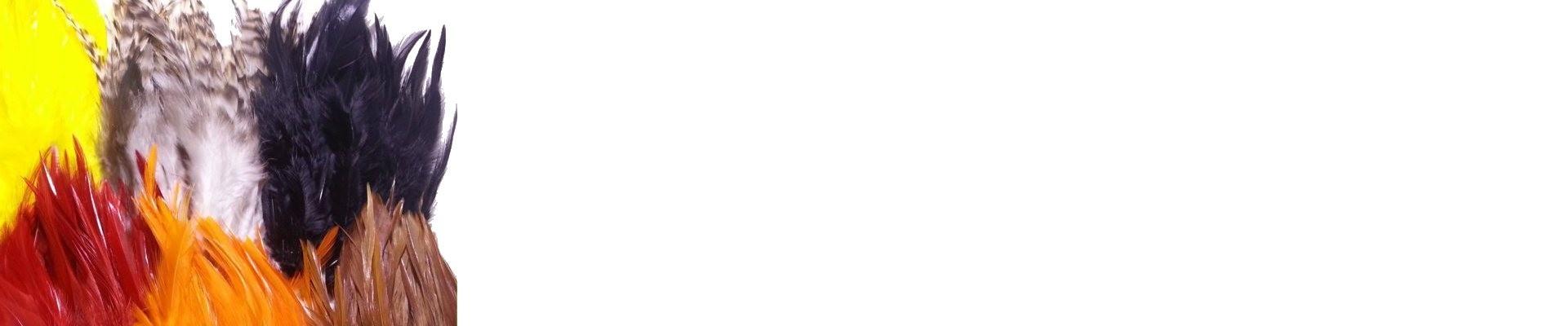 Piume di Gallo